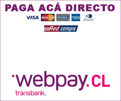 BOTON PAGO LINK WEB PAY EUROPER